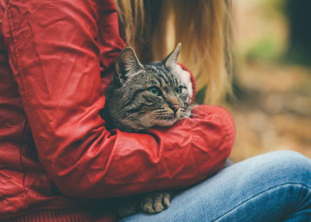 Odpowiedzialny opiekun będzie spędzał czas ze swoim kotem oraz poświęci mu więcej uwagi i troski. Komunikacja niewerbalna w relacjach z naszymi zwierzakami ma wysoką wartość, wyższą w mojej ocenie od werbalnej.