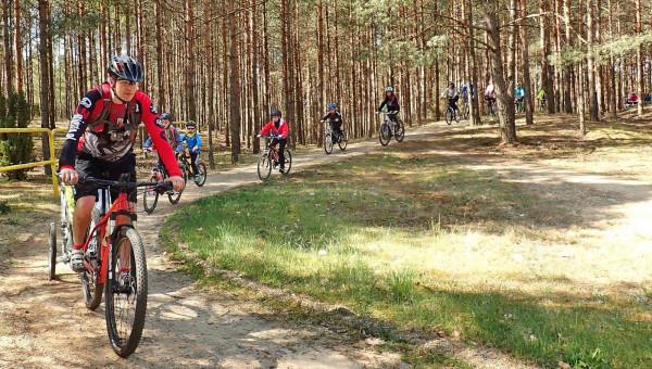 Zielone Płuca Pomorza, Park Narodowy Bory Tucholskie, to przepiękny rejon na rodzinną wycieczkę rowerową