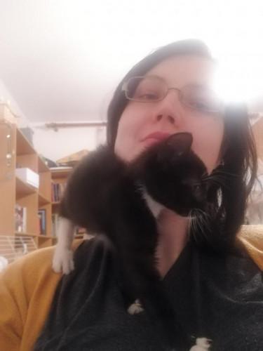 Pod opieką akcji Koty Spod Bloku jest obecnie już 40 zwierzaków.