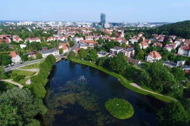 Staw Młyński w Oliwie (ul. Spacerowa/Opacka) to zbiornik retencyjny na potoku Oliwskim. Kiedyś spiętrzał wody wykorzystywane w oliwskim młynie.
