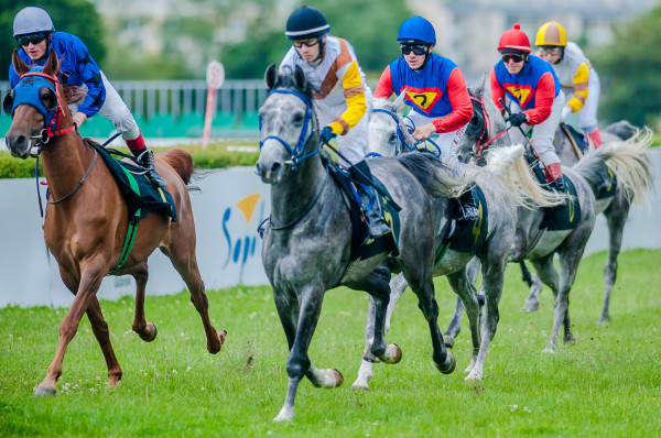 W lipcu wyścigi konne na hipodromie miały odbyć się w dwa weekendy. Imprezy trzeba było jednak odwołać w obawie o zdrowie koni, którym groziło zarażenie groźnym wirusem.