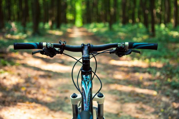 Rower górski za 2-2,5 tysiąca złotych może być sprzętem, który przyniesie nam wiele radości.