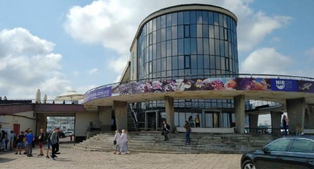 Akwarium Gdyńskie poszukuje wykonawcy remontu tarasu.