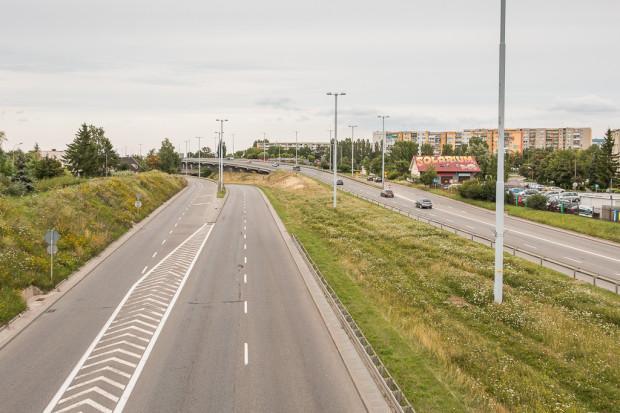Naturalna łąka kwietna w pasie rozdziału Trasy W-Z (al. Armii Krajowej).