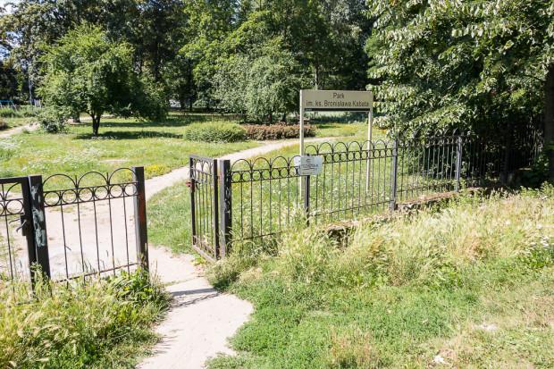 Zaniedbana zieleń w parku Kabata na Jasieniu.