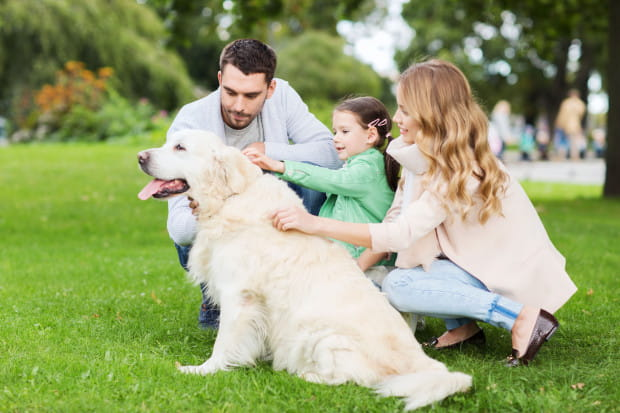 W ten weekend mamy dla was mnóstwo propozycji na rodzinne spędzenie czasu.