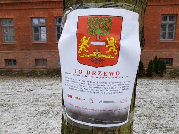 Plakat na drzewie przewidzianym do wycinki na Podwalu Staromiejskim
