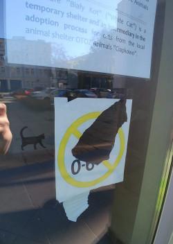 Nie wszyscy zgadzają się na regulamin kawiarni Biały Kot, wg którego ze względu na dobro zwierzaków m.in. wstępu do lokalu nie mają dzieci poniżej szóstego roku życia. Na zdjęciu: zerwany z drzwi wspomniany regulamin.