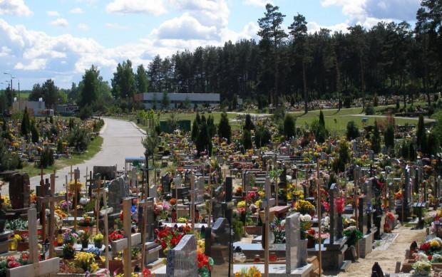 Cmentarz w Kosakowie