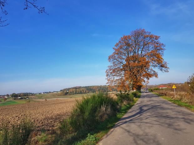 Kaszubskie pola w jesiennej scenerii