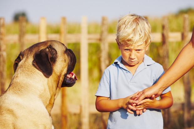 Kynofobia to irracjonalny strach przed psami. Szanujmy osoby, które nie chcą witać się z naszymi czworonogami.