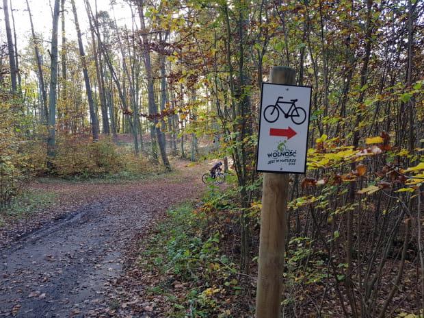 """Fragment trasy rowerowej """"Wolność jest w naturze 2015"""" nadleśnictwa Kolbudy"""