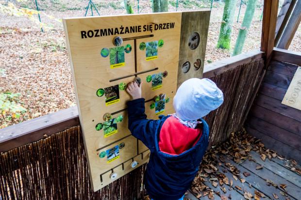 Leśny Ogród Botaniczny Marszewo