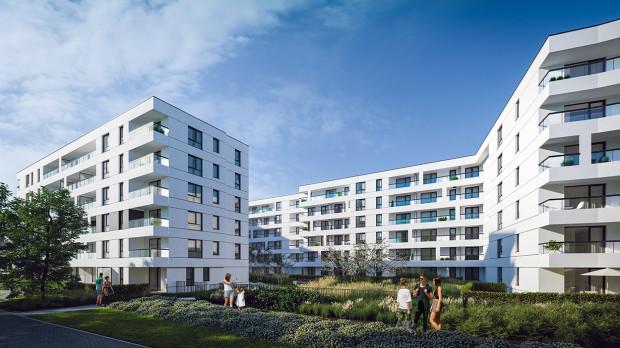 Cis. Ze względu na kształt działki budynki okalały będą zielony, wewnętrzny dziedziniec.