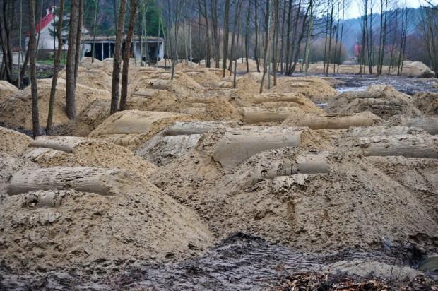 Tak wyglądał w 2015 roku teren w dolinie Radości, na który nawieziono piasek.
