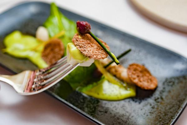 Stowarzyszenie Otwarte Klatki organizowało wiele akcji związanych z promocją kuchni roślinnej, m.in. kolację w Białym Króliku.