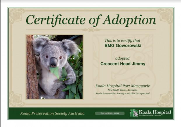 Certyfikat adopcji koali Jimmy'ego przez BMG Goworowski.