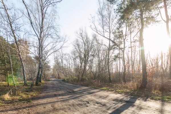 Plan zagospodarowania dopuszcza budowę miejsc postojowych wzdłuż drogi 007-KD80 prowadzącej niemal do molo. Jaki zatem jest sens budowy wcześniej dużego parkingu buforowego? Po prawej działka PB Górski - RWS.