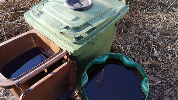 Pojemniki na śmieci, beczki i wiadra w pobliżu torów na Olszynce wypełnione były po brzegi ropopochodną substancją. Wszystko wskazuje na to, że ktoś ukradł paliwo z kolejowej cysterny.