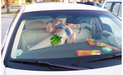 W Kanadzie odnotowano przypadek kierowcy, który by skorzystać z pasa dla samochodów z wieloma pasażerami posadził obok siebie na siedzeniu dmuchaną lalkę.
