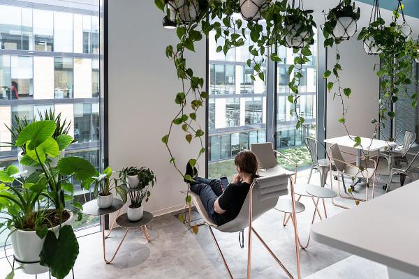 Zieleń w przestrzeni do pracy jest coraz ważniejsza - biuro Nordea Banku w Łużycka Office Park.
