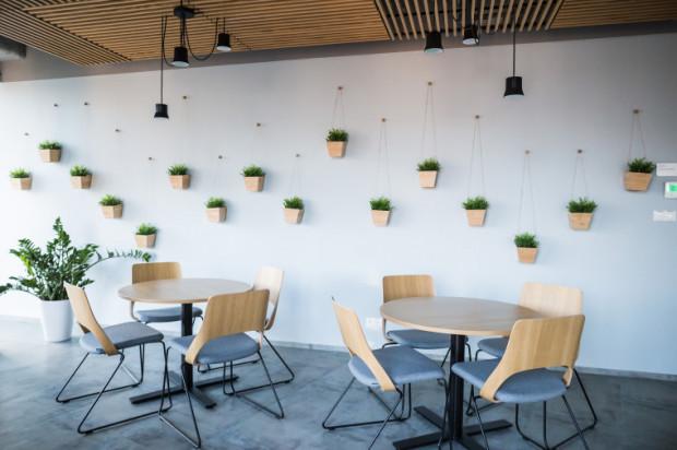 Do dyspozycji pracowników pozostaje łącznie 40 niewielkich kuchni, które są wyposażone we wszystkie potrzebne sprzęty, cztery stołówki oraz jedna kawiarnia.