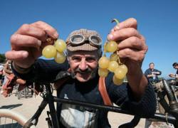 Zamiast izotoników i batonów zawodnicy częstowani są winem i owocami.