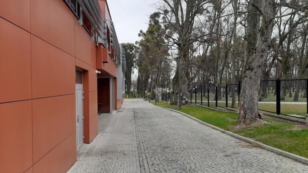 Uczelnia przekonuje, że dokonuje jedynie przestawienia płotu, który w obecnej lokalizacji sprawia, że studenci po wyjściu budynków Wydziału Chemicznego nie mają dostępu do terenu zieleni.