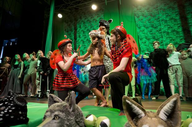 """Rejestracja kolejnego musicalu z udziałem dzieci - tym razem """"Księga Dżungli"""" - została udostępniona przez trójmiejski Teatr Komedii Valldal."""