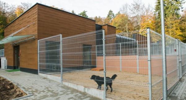 Obiekt w Małym Kacku przyda się wyprowadzającym psy wolontariuszom ze schroniska Ciapkowo.