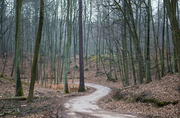 Główna trasa będzie miała długość niemal 21 km, zaś pięć łączników osiągnie łączną długość ponad 18 km.