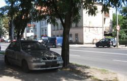 Trudne zadanie wyznaczyli sobie włodarze Sopotu. Wiele budynków przy al. Niepodległości jest zaniedbanych,  można tu też napotkać porzucone auta.
