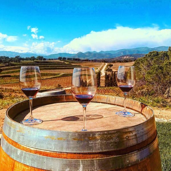 KaapVino słynie z win sprowadzanych z RPA.