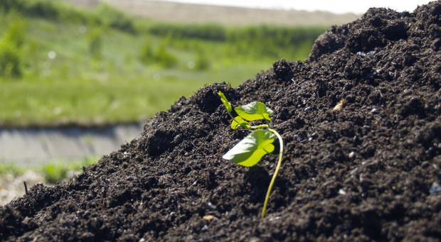 """""""Czarne złoto"""", czyli kompost z Szadółek, produkowany jest z odpadów bio, segregowanych przez mieszkańców."""