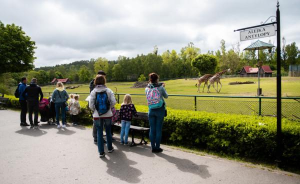 Bilet trzeba kupić na określony przedział czasowy, ale nie ma limitu, ile można przebywać na terenie ogrodu.