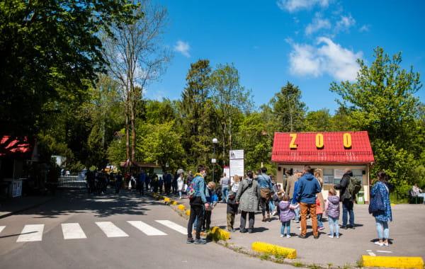 Zoo w Oliwie zwiększyło limity dla gości. Jednocześnie może tam teraz przebywać już nie 500, a 700 osób.