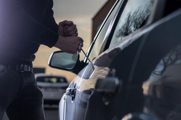 Właściciel posesji, na której doszło do kradzieży, zawiadomił policję w poniedziałkowy poranek.