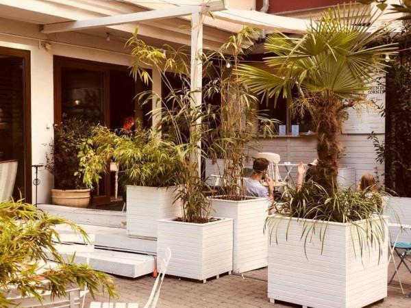 """W """"przytulonym"""" do pubu Red Light ogródku rosną... palmy i bambusy."""