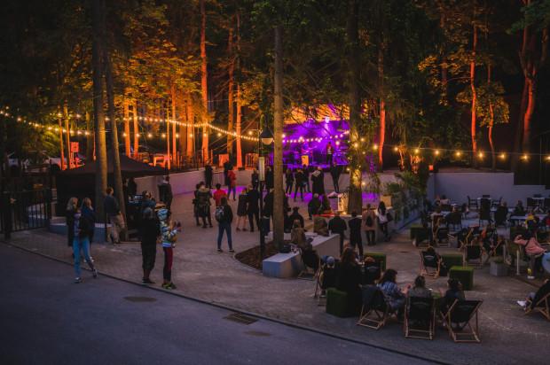 Widzowie woleli słuchać koncertu z leżaków, niż stojąc pod sceną.