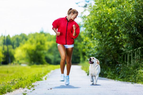"""Psy to zwierzęta żwawe i ciekawskie, a co więcej - obdarzone naturalną potrzebą pogoni. Szybko poruszające się obiekty to dla nich nie lada gratka. Często tymi """"obiektami"""" bywają biegacze. Jedni chętnie przywitają się z czworonogiem, inni niekoniecznie."""