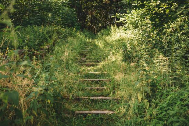 Nowe schody powinny być gotowe w ciągu pięciu miesięcy od momentu zawarcia umowy z wykonawcą.