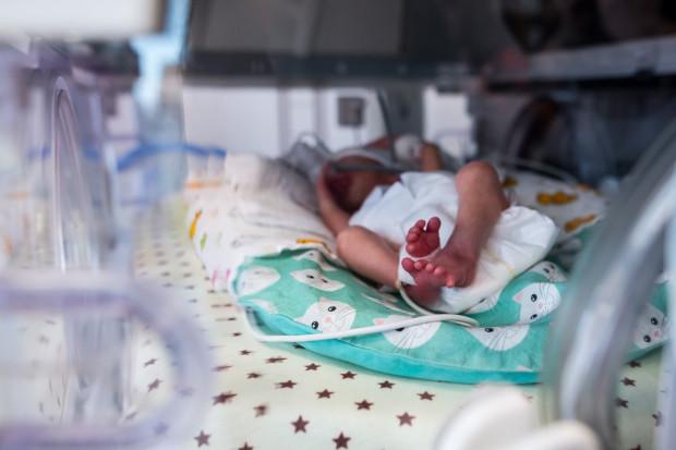 Do 30 czerwca 2020 r. dzięki miejskiemu programowi wsparcia leczenia niepłodności na świat przyszło 240 dzieci.