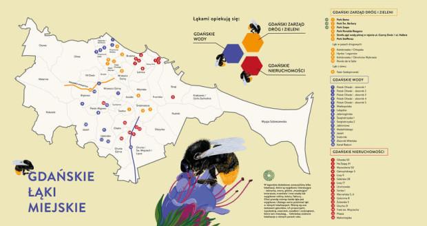 Lokalizacja gdańskich łąk. Miejsc, w których zaprzestano koszenia zieleni jest jednak znacznie więcej.
