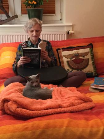 Praca na kolorowym łóżku i w towarzystwie kotów to według Izabeli Morskiej szczęście i przyjemność w jednym.