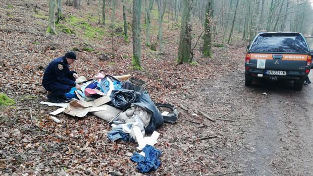 Strażnicy miejscy z Gdyni w marcu namierzyli osobę zaśmiecającą las. Dostała 500 zł mandatu.