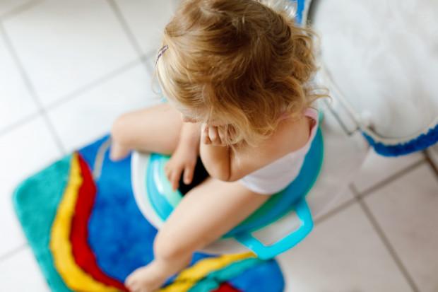 Niektóre dzieci nie chcą korzystać z nocnika, ale sprawdza się u nich nakładka na sedes.