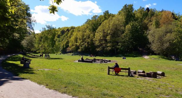 Tuż obok Polanki Redłowskiej często spotkać można mieszkańców, którzy odpoczywają tu nie tylko latem.