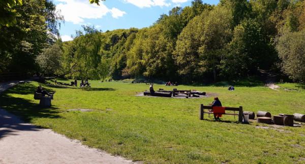 Podczas wirtualnej dyskusji publicznej padały zapewnienia, że polana piknikowa przy Polance Redłowskiej pozostanie w pełni dostępna dla mieszkańców.