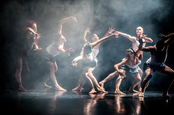 Spośród 140 zgłoszeń, nadesłanych na Solo Dance Contest podczas Gdańskiego Festiwalu Tańca, wybrano 30 nagrań tancerzy, między innymi z USA, Izraela i Włoch.