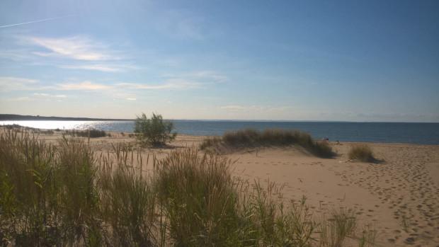 Zbadano próbki wody z Zatoki Gdańskiej z wytypowanych dwóch miejsc, w których organizowane były kąpieliska: w Gdańsku-Świbnie oraz w Mikoszewie.
